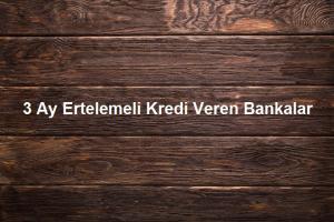 3 Ay Ertelemeli Kredi Veren Bankalar 300x200 - İlk Defa Kullanacaklar İçin İhtiyaç Kredisi Rehberi