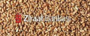 Ziraat Bankası Tarım Kredisi 310x124 - Tarım Kredisi Nasıl Alınır?