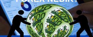 forex nedir foreks piyasaları 310x124 - Forex Nedir?