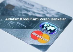 Aidatsız Kredi Kartı Veren Bankalar 300x217 - İlk Kez Kullanacaklar İçin Kapsamlı Kredi Kartı Rehberi