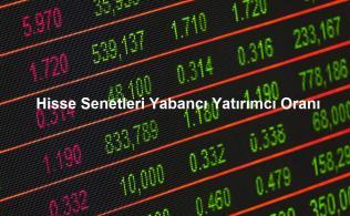 yabancı yatırımcı analizi 316x195 - Borsadaki Yabancı Yatırımcılar