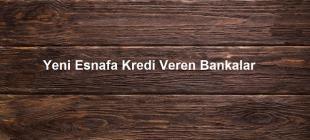 Yeni Esnafa Kredi Veren Bankalar 310x140 - Yeni Esnafa Kredi Veren Bankalar