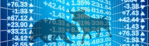 borsa eğitimi - Borsa Nasıl Öğrenilir?