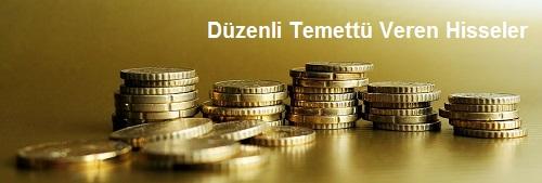 Düzenli Temettü Veren Hisseler - Borsada Uzun Vade Temettü Yatırımcılığı Rehberi