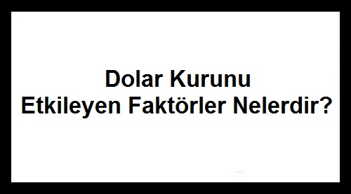 Dolar Kurunu Etkileyen Faktörler Nelerdir - Dolar Ne Olur?