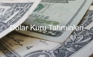 dolar ne olur 316x195 - Dolar Ne Olur?