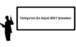 Türkiyenin En Güçlü BİST Şirketleri 316x195 - Türkiye'nin En Güçlü BİST Şirketleri