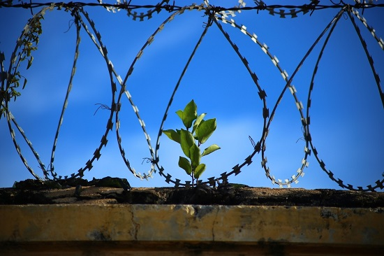 Banka Kredi Borcu Haciz ve Hapis Cezası - Banka Kredi Borcu Ödenmezse Karşılaşabileceğiniz Durumlar