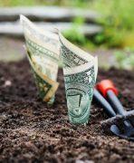 En İyi Yatırım Neye Yapılır 148x180 - En İyi Yatırım Neye Yapılır?