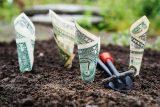 En İyi Yatırım Neye Yapılır 160x107 - En İyi Yatırım Neye Yapılır?