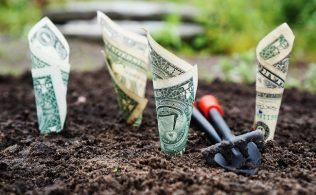 En İyi Yatırım Neye Yapılır 316x195 - En İyi Yatırım Neye Yapılır?
