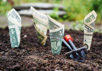 En İyi Yatırım Neye Yapılır 360x250 - En İyi Yatırım Neye Yapılır?