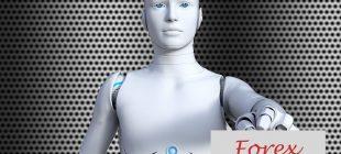 en iyi forex robotları 310x140 - Otomatik Forex İşlem Robotları
