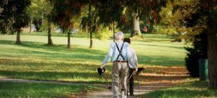 Emekli Promosyon Başvurusu 310x140 - Bankalardan Emeklilere Promosyon Fırsatı!