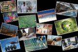 Borsada gelecek vaad eden hisseler 160x107 - Türkiye'nin Gelecek Vaat Eden Sektörleri ve BİST Şirketleri