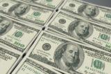 dolar kullanan ülkeler 160x107 - Para Birimi Dolar Olan Ülkeler