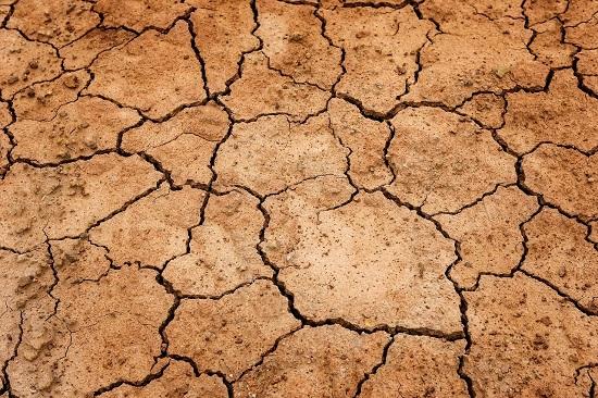 tarım sigortası tarsim - Türkiye'de Uygulanan Sigorta Çeşitleri