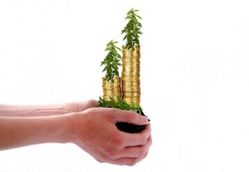 kriz döneminde neye yatırım yapmalı 360x250 - Kriz Döneminde En Çok Tercih Edilen 4 Yatırım Aracı