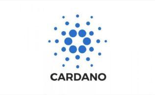 ADA TRY Cardano Kripto Para 316x195 - ADA - Cardano Kripto Para Hakkında Merak Edilenler