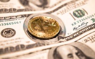 Kripto Para Yatiriminda Dikkat Edilmesi Gerekenler 316x195 - Kripto Para Yatırımı İçin İlk Ders